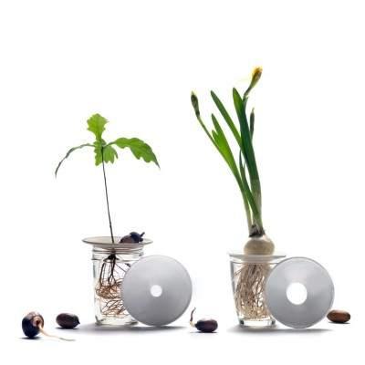 Coupelle de germination en porcelaine taille M Botanopia - Maison James Close à Antibes