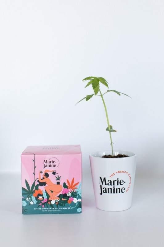 Kit de plantation de Chanvre La Brunette - Maison James Close à Antibes