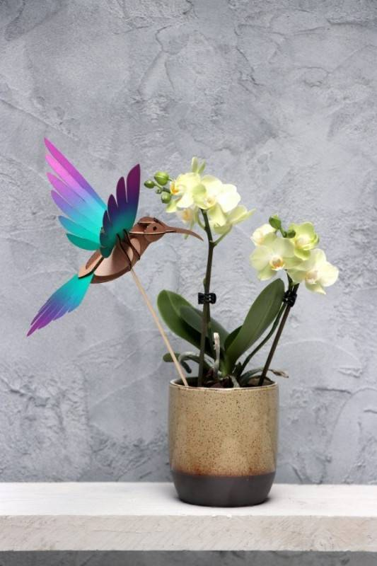Colibri Vert & Violet à Assembler